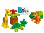 LEGO® Duplo Jungtiere (10801-1) released in (2016) - Image: 1
