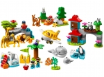 LEGO® Duplo World Animals (10907) released in (2019) - Image: 1